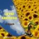 Ebook Letní abeceda pro studenty češtiny pro cizince zdarma